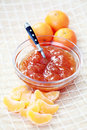 Tangerine jam Royalty Free Stock Photography
