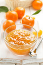 Tangerine jam Royalty Free Stock Photo