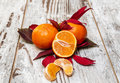 Tangerine with orange leaves surrounded by rustic background Stock Photography