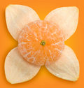 Tangerine and peel #1 | Clipping paths Royalty Free Stock Photo