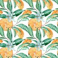 Tangerine seamless pattern. Orange cut, flowers and leaves. Watercolor illustration isolated on white background.
