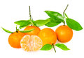 Tangerine with segments Royalty Free Stock Photo