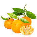 Tangerine with segments Royalty Free Stock Images