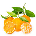 Tangerine with segments Stock Images