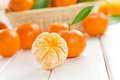 Tangerines Royalty Free Stock Image
