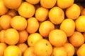 Bunch of fresh mandarin oranges on market Royalty Free Stock Photo