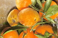 Tangerines close up of fresh and peach Royalty Free Stock Photos