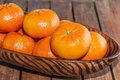 Tangerines fruit bowl filled with Royalty Free Stock Images