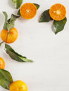 Tangerines with leaves fresh ripe Royalty Free Stock Images