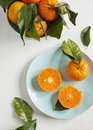 Tangerines with leaves on plate Stock Photos