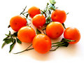 Tangerines with leaves on white 1 Royalty Free Stock Image
