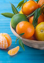 Tangerines and lime Stock Image