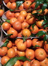 Tangerines for sale in a greengrocer Stock Images