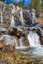 Tangle creek fall in jasper national park canada Stock Image