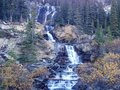 Tangle falls on the icefields parkway Royalty Free Stock Photo