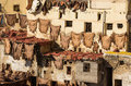 Tannery in fes view on city morocco Stock Image