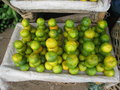 Tanzania morogoro market in stacked fruit Stock Images