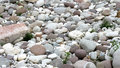 Tapered and rounded pebbles on the shore of the river in norther great northern italy Royalty Free Stock Photo