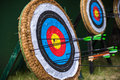 Target archery Royalty Free Stock Photo
