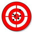 Target and shots Royalty Free Stock Image