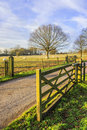 Tarmac country lane road rural environment countryside Royalty Free Stock Image
