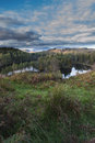 Tarn Hows Stock Images