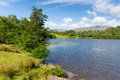 Tarn Hows near Hawkshead Lake District National Park England uk on a beautiful sunny summer day Royalty Free Stock Photo