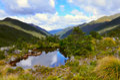 Tarn near Fenella Hut,Kahurangi National Park Royalty Free Stock Photo