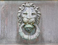 Tarnished brass or copper lion head door knob knocker aged medallion made of which is Royalty Free Stock Photos