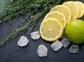 Tarragon with lemon sugar and lime fresh on black wet background Stock Image