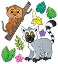 Tarsier and lemur theme set 1