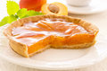 Tart with apricot Stock Photos