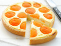 Tart with cheese and apricots Royalty Free Stock Image