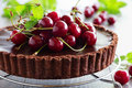 tart with fresh cherry. Royalty Free Stock Photo