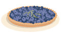 Tarte de myrtille Photographie stock