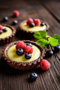 Tartlets with vanilla pudding, blueberry and raspberry Royalty Free Stock Photo
