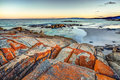 Tasmania bay of fires scenic and pristine white sandy beach with turquoise crystal waters and orange lichen covered granite Royalty Free Stock Photography