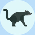Tasmanian devil baring its teeth australia nature marsupial wildlife character vector illustration.
