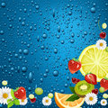 Taste of summer raster version illustration Stock Image