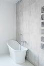 Tasteful and porcelain bathtub Royalty Free Stock Photo