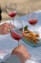 Tasting ros  wine Royalty Free Stock Photo