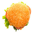 Tasty and appetizing hamburger on a white background Royalty Free Stock Photography