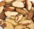 Tasty Brazilian nut Royalty Free Stock Photo