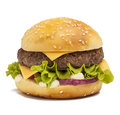 Tasty burger Royalty Free Stock Photo