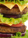 Tasty Double Cheeseburger close up Stock Photo