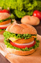 Tasty fishburger fresh sandwich on the table selective focus in the middle of Royalty Free Stock Photo