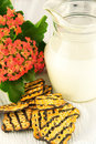 Tasty fruitcake and jug with milk Royalty Free Stock Images