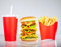 Tasty hamburger and french fries Royalty Free Stock Photo