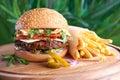 Tasty hamburger and french fries Royalty Free Stock Photo