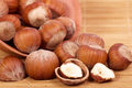 Tasty hazelnuts photo for a design Royalty Free Stock Photos